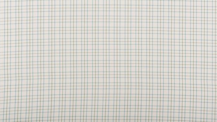 Counterpane Check Blue/Green