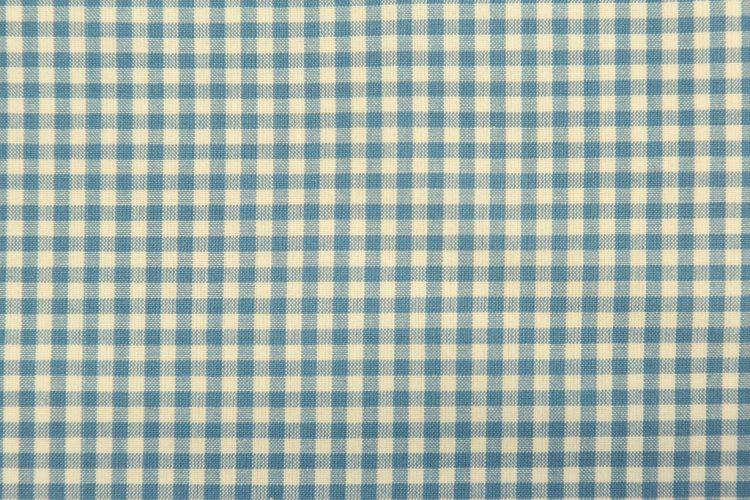 6254-2 DOUGLAS CHECK BLUE
